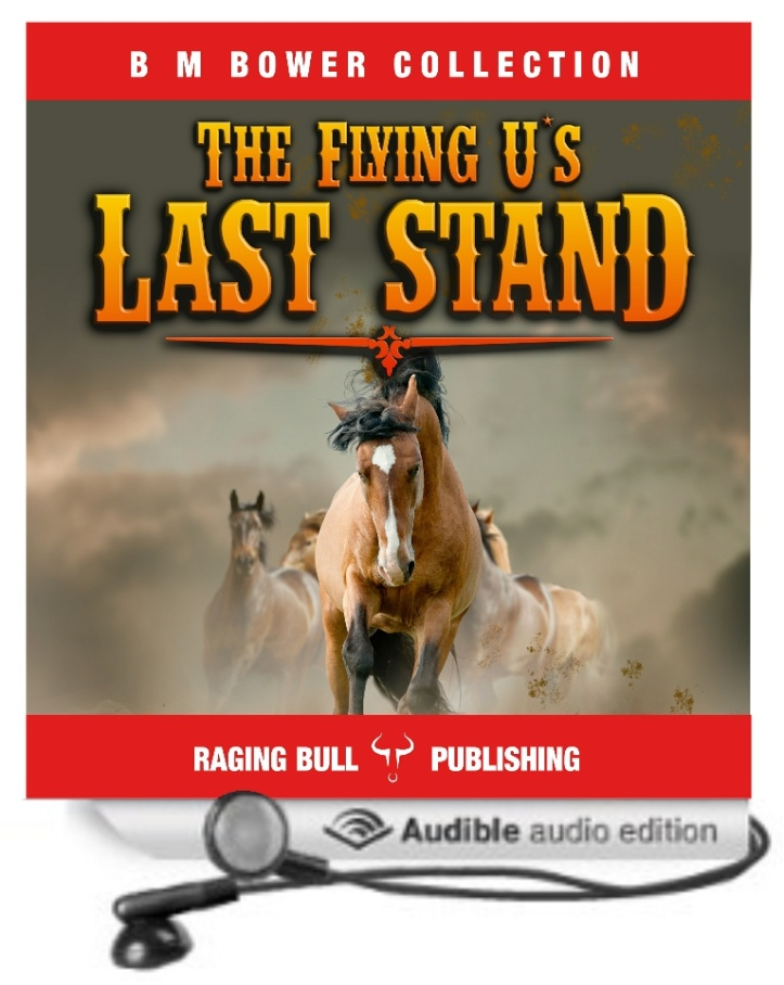 flying-us-last-stand2acx2